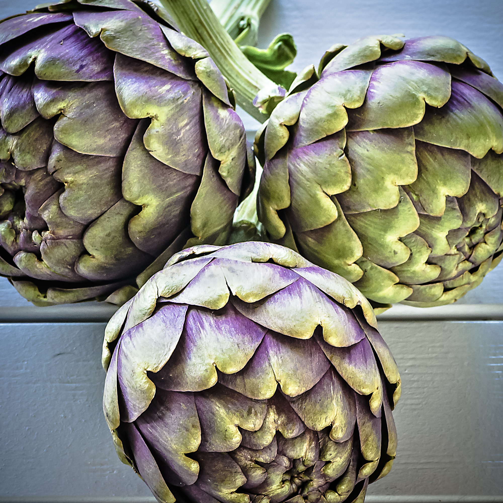 Artichokes - Caro Blackwell Photography