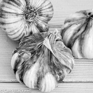 Garlic - Caro Blackwell Photography